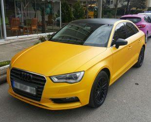 Effect Pigments_Goldeffekt Audi